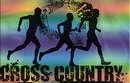 Cross-Country / Championnat Interdépartemental